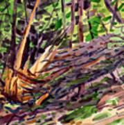 Shattered Pine Art Print