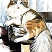 She Has Got The Look - Cat Portrait Art Print