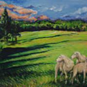 Sheep At Dusk Art Print
