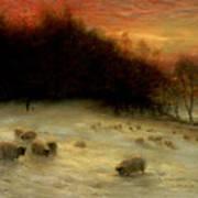Sheep In A Winter Landscape Evening Art Print