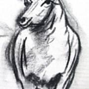 Sheep In Charcoal  Art Print