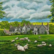 Sheep In Repose Art Print