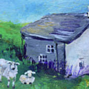 Sheep In Scotland  Art Print