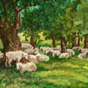 Sheep Pasture Ithaca New York Art Print by Ethel Vrana