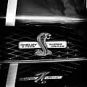 Shelby Gt 500 Super Snake Art Print