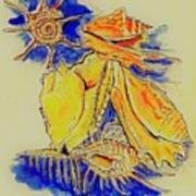 Shell Treasures Art Print