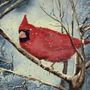 Shelly's Cardinal Art Print