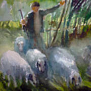 Shepherd... Art Print