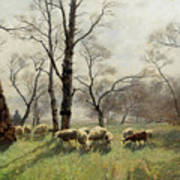 Shepherd With His Flock In The Evening Light Art Print