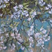 Sherry Flower 1 Art Print
