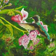 Shimmering Hummingbird  Art Print