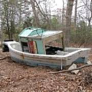 Shipwrecked In The Pinelands Art Print