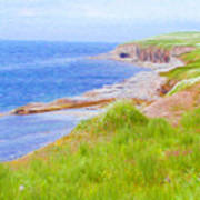 Shores Of Newfoundland Art Print