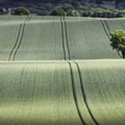 Shropshire Hills Art Print
