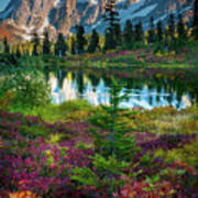 Shuksan Autumn Art Print