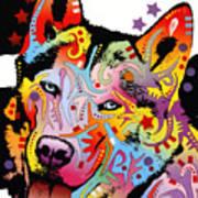 Siberian Husky 2 Print by Dean Russo