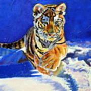 Siberian Tiger Cub Art Print