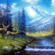 Sierra Mountain Meadow   Art Print