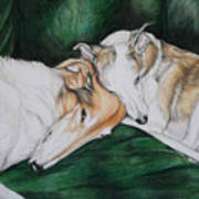 Sighthound Comfort Art Print
