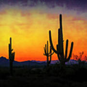 Sihouette Sunrise In The Sonoran Art Print