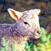 Silence Of The Lamb Art Print