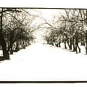 Silenced By The Snow Art Print