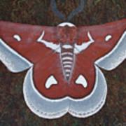 Silk Moth Art Print