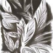 Silky Art Print