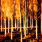 Silver Birches Flaming Abstract  Art Print
