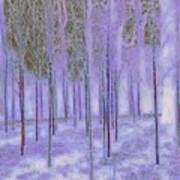 Silver Birch Magical Abstract  Art Print