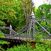 Silver Bridge 004 Art Print