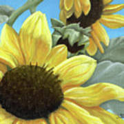 Silver Leaf Sunflower Growing To The Sun Art Print