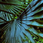 Silver Palm Leaf Art Print