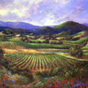 Silverado Valley Blooms Art Print