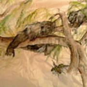Simian And Beetle Art Print
