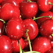 Simply Cherries  Art Print