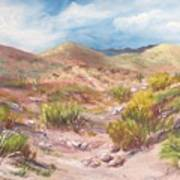Simply The Desert Art Print by Jean Ann Curry Hess