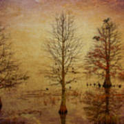 Simply Trees Art Print