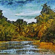 Sinamaica Lake - Venezuela Art Print
