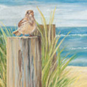Singing Greeter At The Beach Art Print