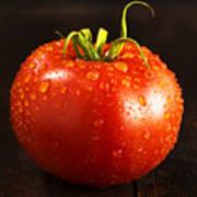 Single Fresh Tomato With Dew Drops Art Print