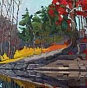 Singleton Autumn Art Print