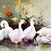 Six Quackers Art Print