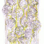 Size Exclusion Chromatography Art Print