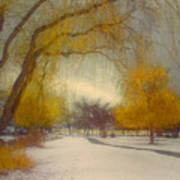 Skaha Path In Winter Art Print
