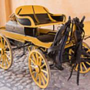 Skansen Carriage Art Print