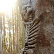 Skeleton Tree Art Print