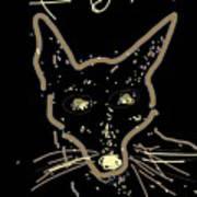 Sketch Of Fox By Kathy Barney Art Print