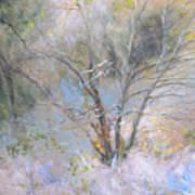 Sketch Of Halation Effect Through Trees Art Print
