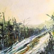 Ski Trail Art Print